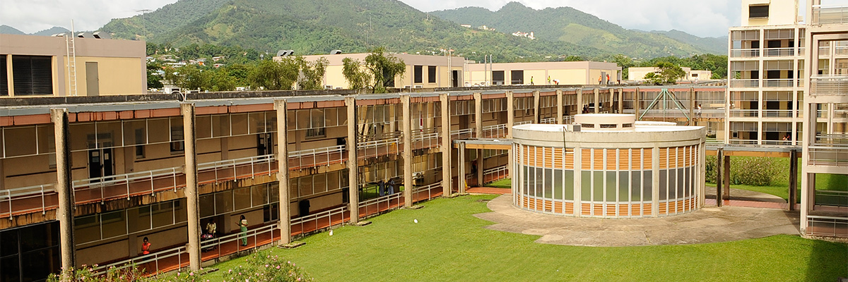 The Faculty of Medical Sciences