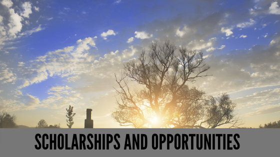 Scholarships and opportunites.png