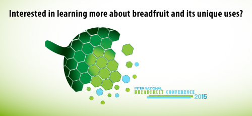 More than Oildown: International Breadfruit Conference 2015